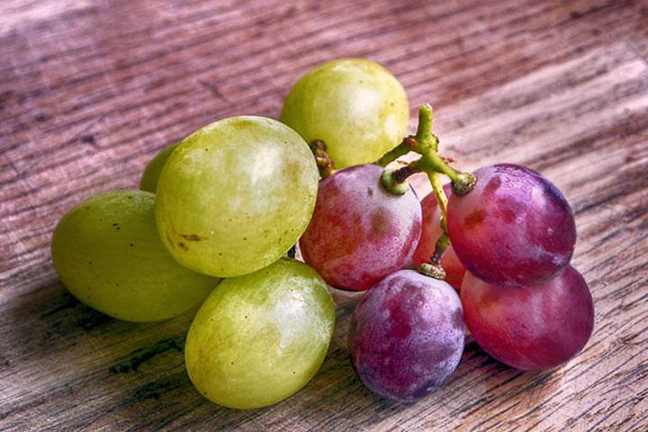 【福智僧團小故事】吃葡萄與總別次第