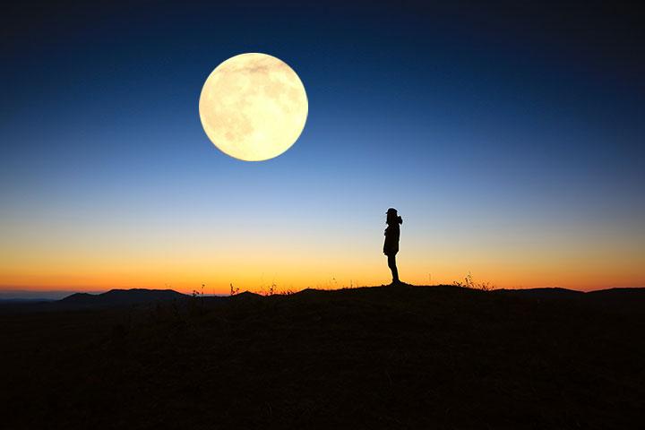 【福智僧團小故事】夜月 有你在身旁